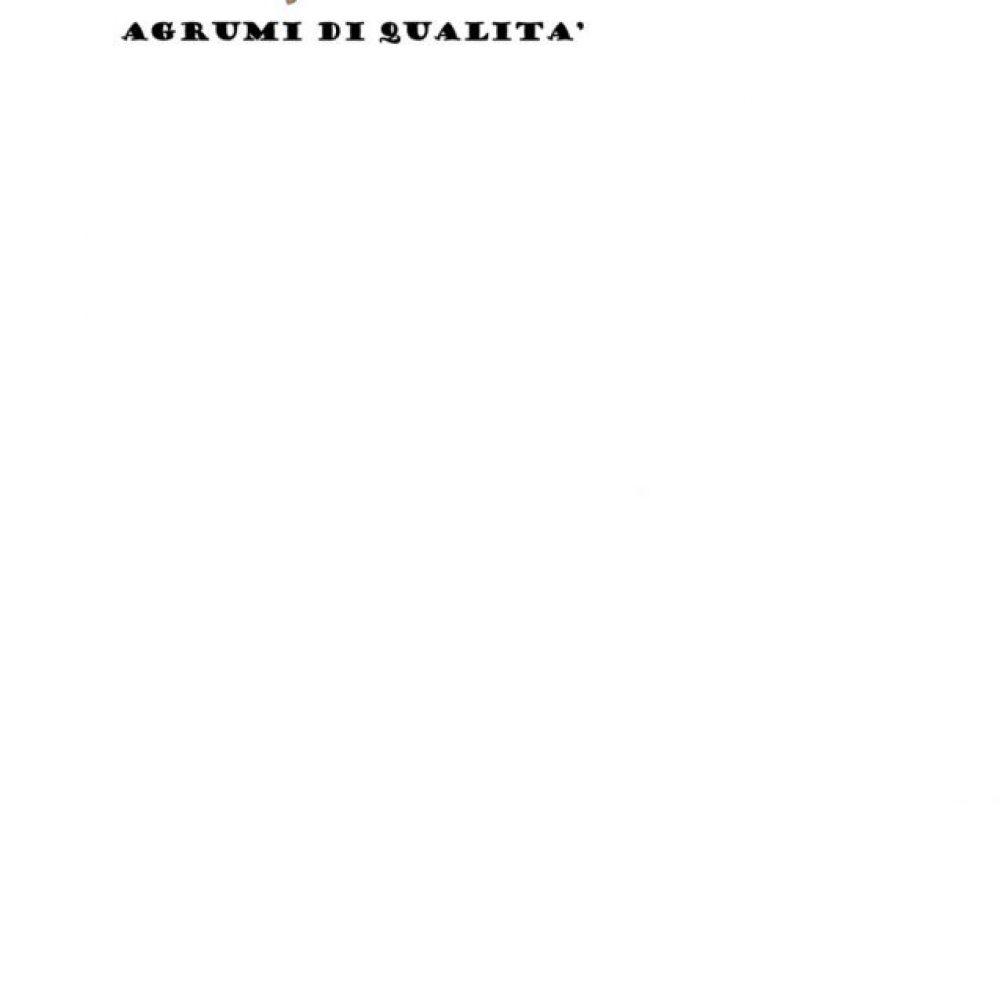 ALGIERI-AGRUMI-DI-QUALITA_page-0001