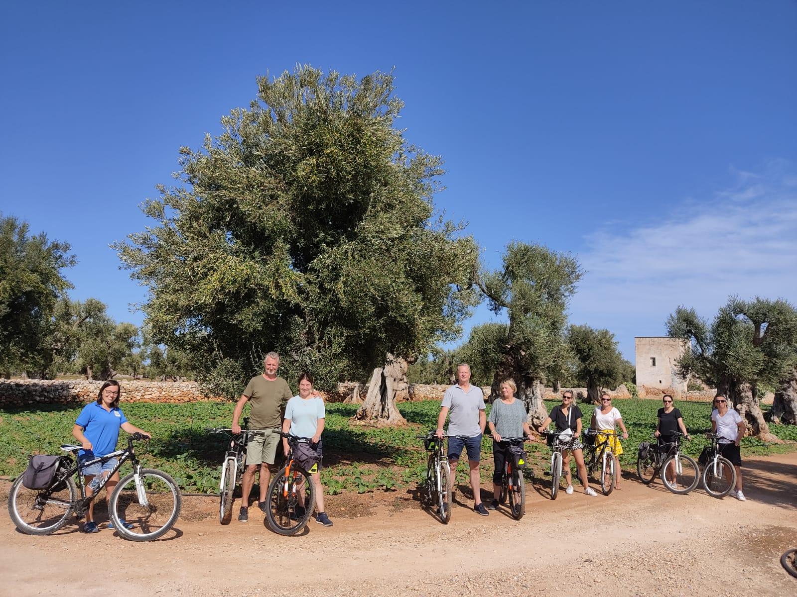 Bike tour tra ulivi millenari, frantoi e masserie fortificate